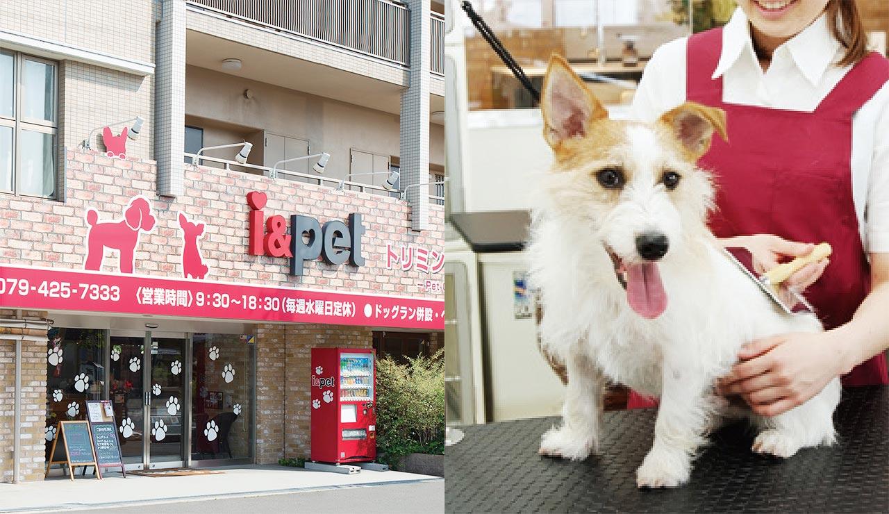 事業紹介 ペット事業 i & Pet 店内写真